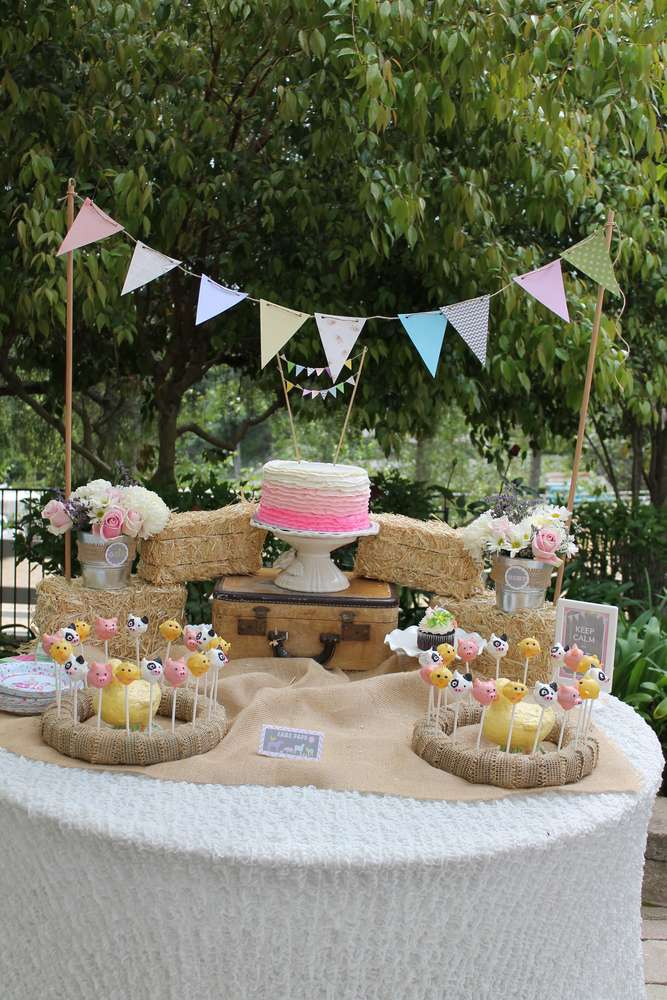 Vintage Girly Western Petting Zoo Birthday Party Ideas Photo 6 Of 42 Catch My Party