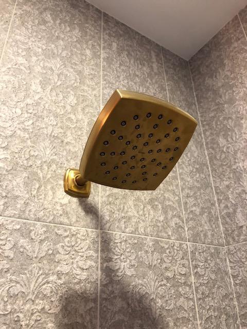 voss brushed gold moentrol shower only