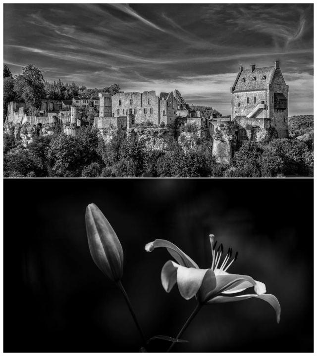 Larochette Castle; Lilium Candidum