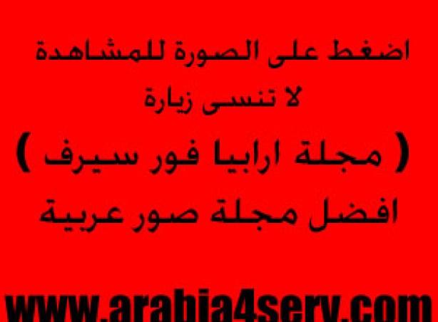 https://i2.wp.com/photos.arabia4serv.com/out.php/i35580_1861.picvip.jpg?resize=614%2C452&ssl=1