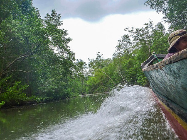 Water-level shot of the wake created by boat on a river in the Darien