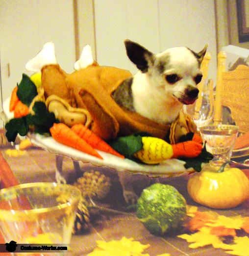 Cooked Turkey Dog Costume Photo 22