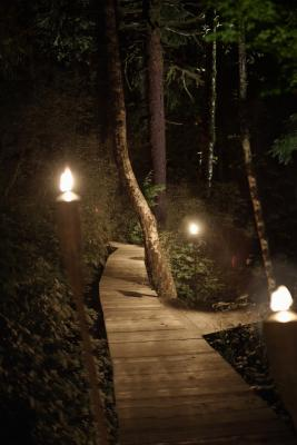 How to Design & Install an Exterior Landscape Lighting System | Home Guides | SF Gate