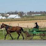 History Of The Horse Cart Getaway Usa