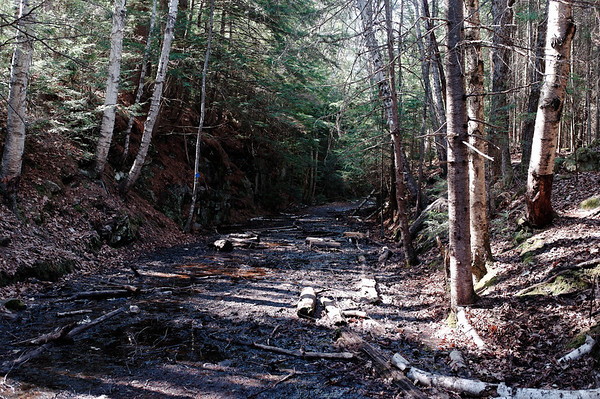 A muddy route along the Booth's Rock Trail in Algonquin Park