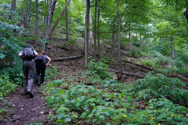 The final hike up hill is steep but a nice last real challenge (aside from the rain).