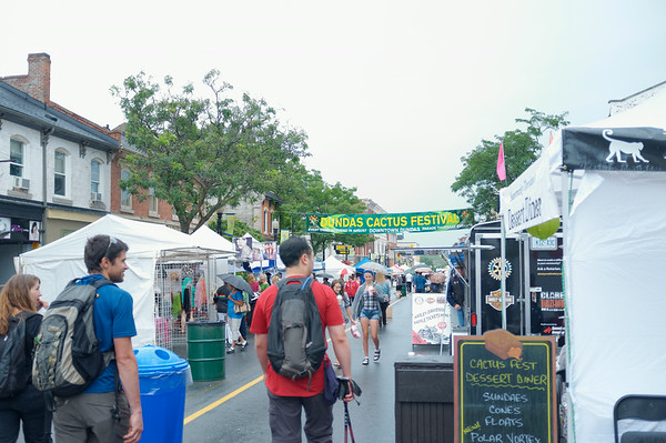 Strolling through the Dundas Cactus Festival