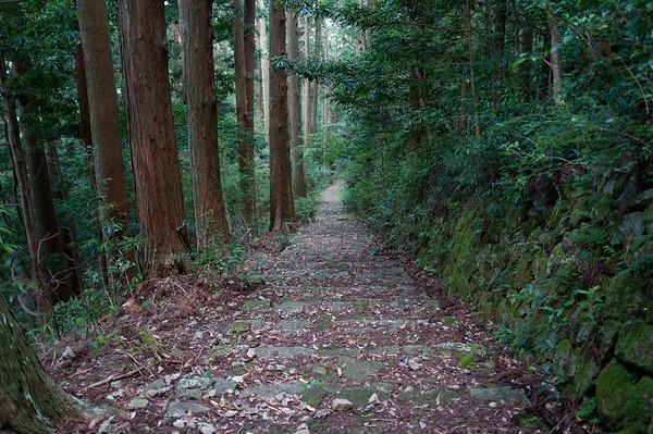 The final set of steps into Nachi-san!