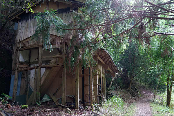 An abandoned house along the trail.