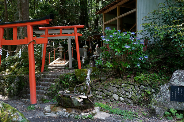 Visiting more shrines along the way.