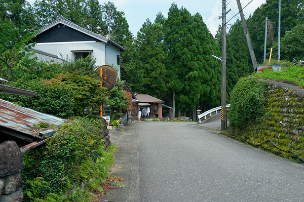 Crossing the small rural road on my way to continue the Kumano Kodo trail.