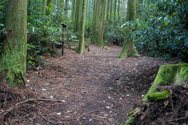 Apparently, this is where the Uwadawa-Jaya teahouse had existed.