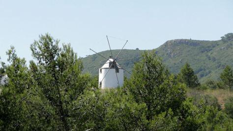 Moulin typique de la région