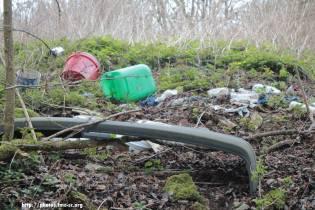 Hélas, la nature est parfois une véritable poubelle...