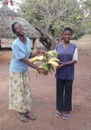 Accueil des Soeurs avec des bananes plantins