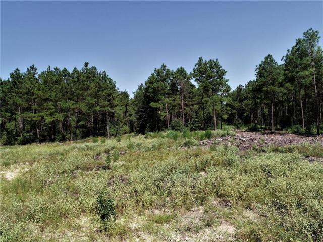 HUNTER'S DELIGHT!     This 79.76 acre tract is located close to the National Forest. It boasts large timber, pine plantation, and hardwoods. Deer are everywhere! Call us today to see this property!