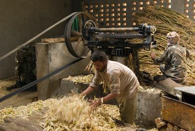 Navdanya sugar cane processing facility