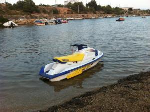 Ski Boat: Raider Ski Boat