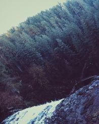 Beautiful Silver Falls - 7