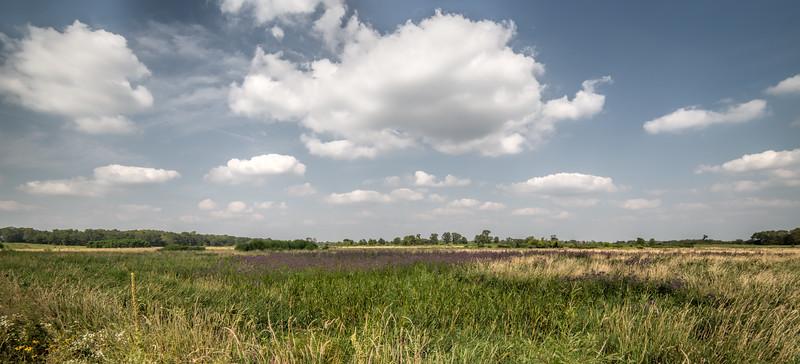 August Prairie II