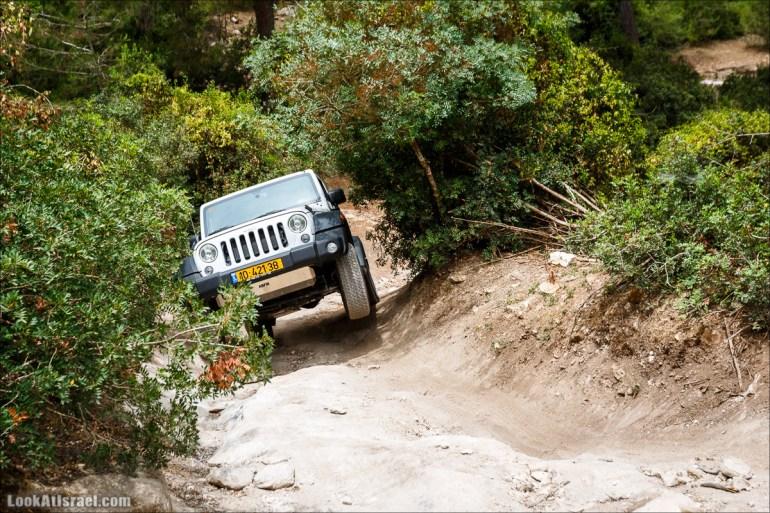 Курс езды по бездорожью на Jeep Cherokee   Jeep Cherokee offload course   LookAtIsrael.com - Фото путешествия по Израилю