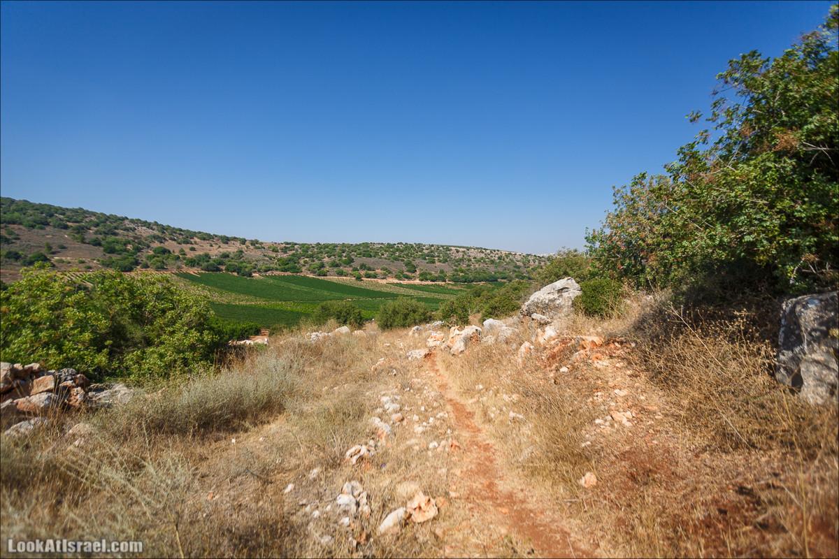 Пейзажная дорога на горах Нафтали | Naftali mts scenic road | LookAtIsrael.com - Фото путешествия по Израилю