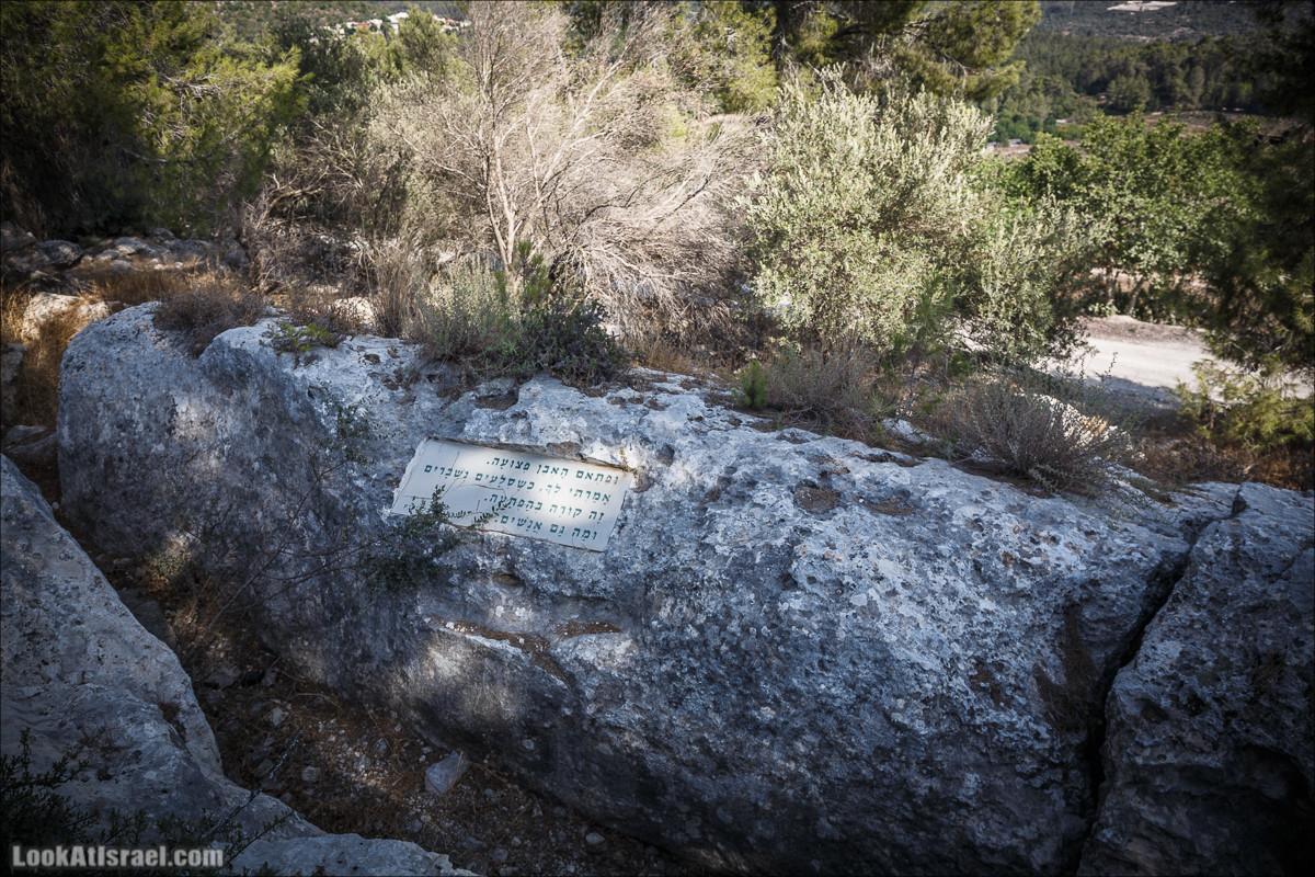 Дорога скульптур в лесу Цора | LookAtIsrael.com - Фото путешествия по Израилю