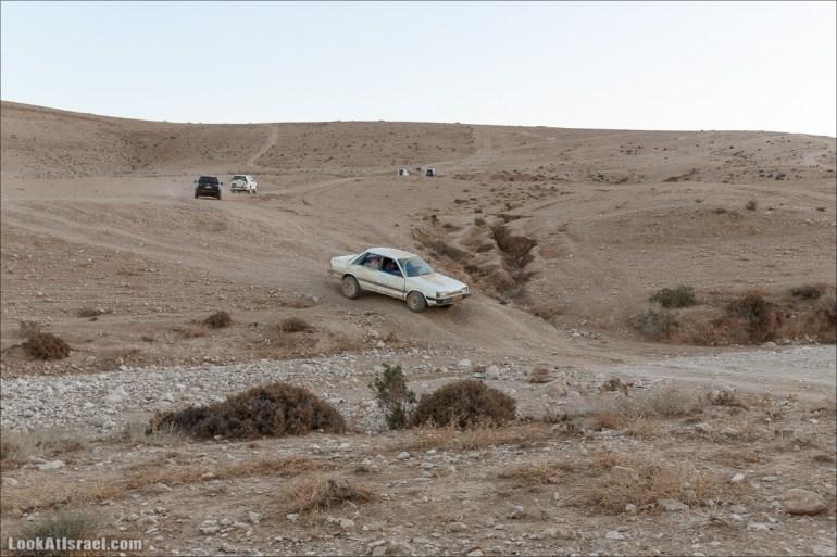 На джипах по Иудейской пустыне, над Мёртвым Море и Масадой | LookAtIsrael.com - Фото путешествия по Израилю