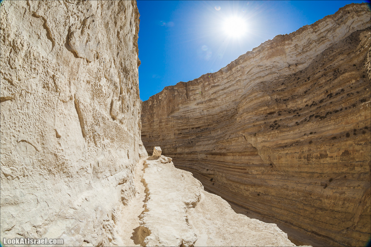 Эйн Авдат | LookAtIsrael.com - Фото путешествия по Израилю