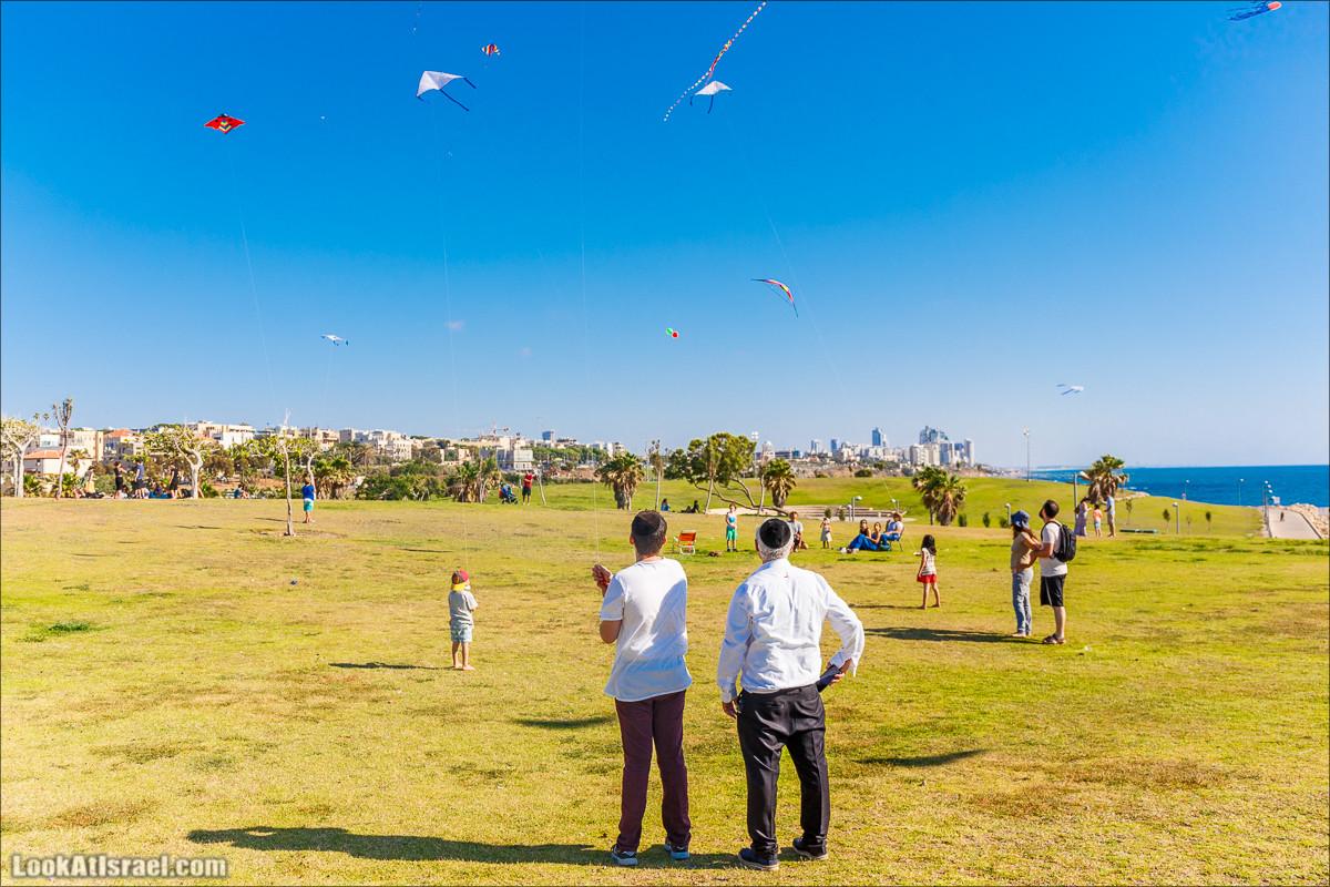 Воздушные змеи в Яффо | LookAtIsrael.com - Фото путешествия по Израилю