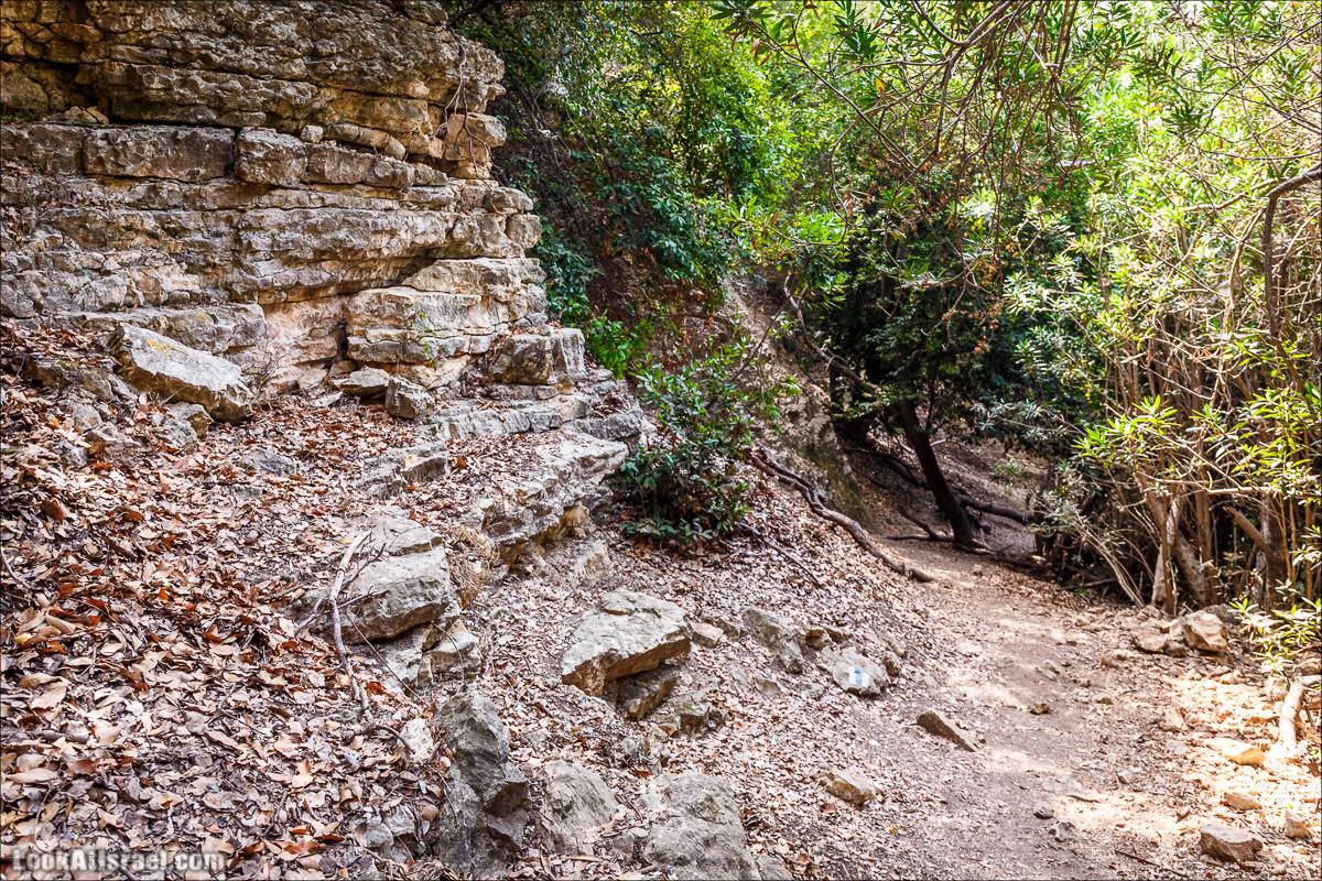 Нахаль Бецет и нахаль Верах | LookAtIsrael.com - Фото путешествия по Израилю