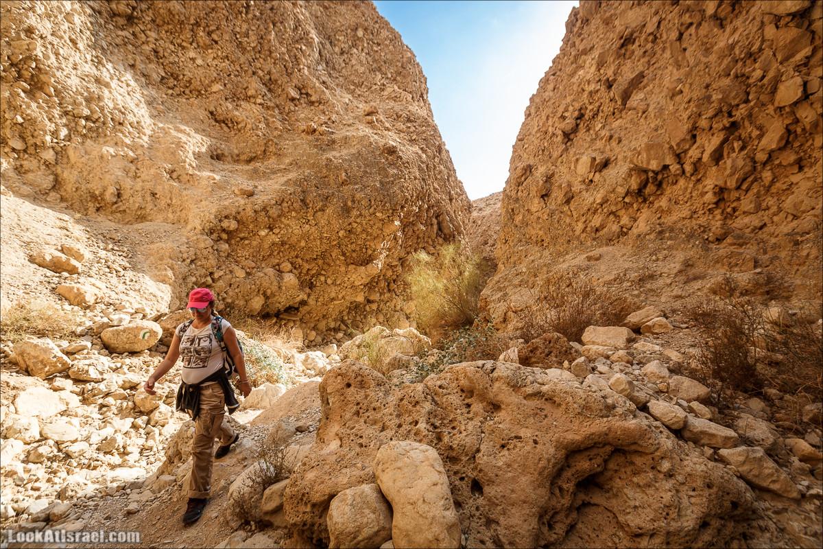 Ущелье Сальвадора   Wadi Salvadora   ואדי סלבדורה   LookAtIsrael.com - Фото путешествия по Израилю