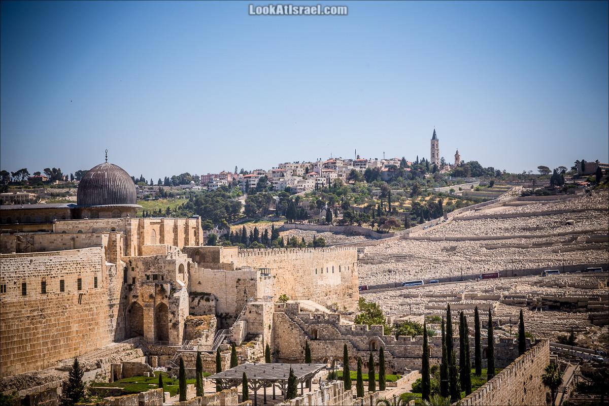 Случайные фотографии из жизни Иерусалима 3