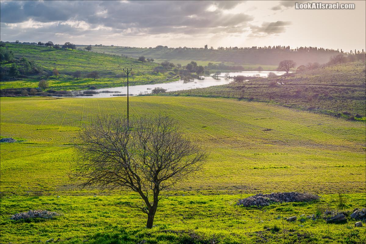 Пейзаж Рамот Менаше |Ramot Mensahe landscape | רמות מנשה | LookAtIsrael.com - Фото путешествия по Израилю
