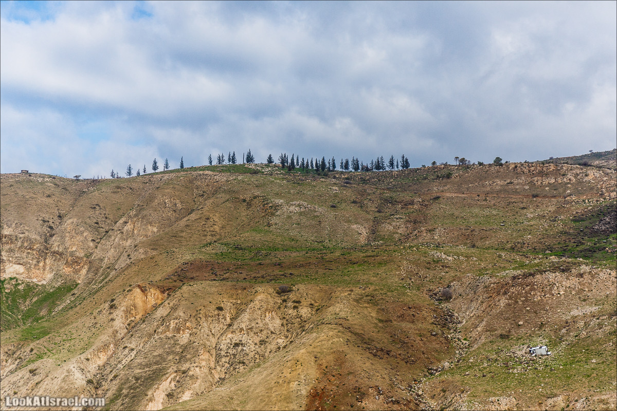 Голанские высоты - водопады и исторические места   LookAtIsrael.com - Фото путешествия по Израилю
