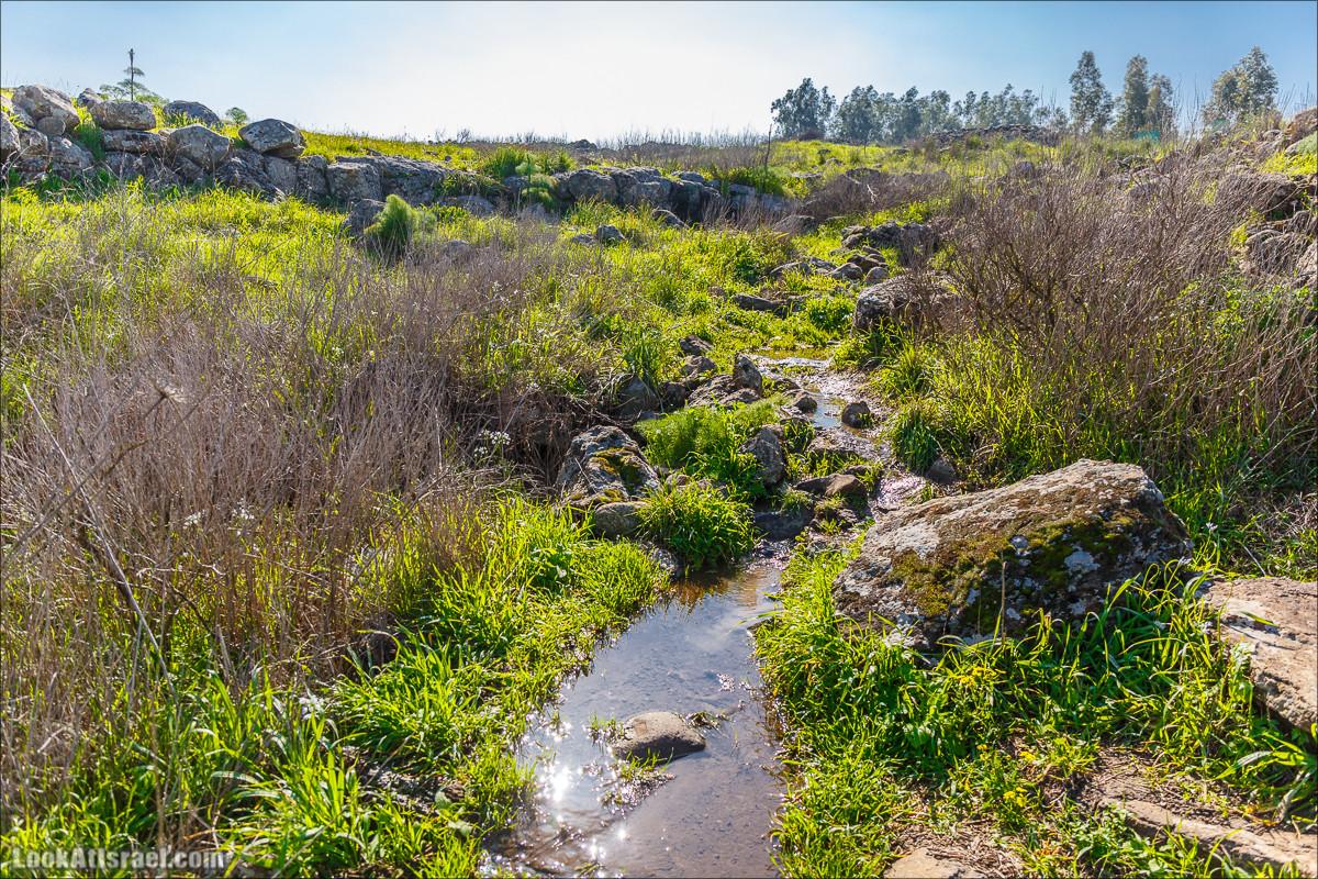 Водопады Голанских высот   LookAtIsrael.com - Фото путешествия по Израилю