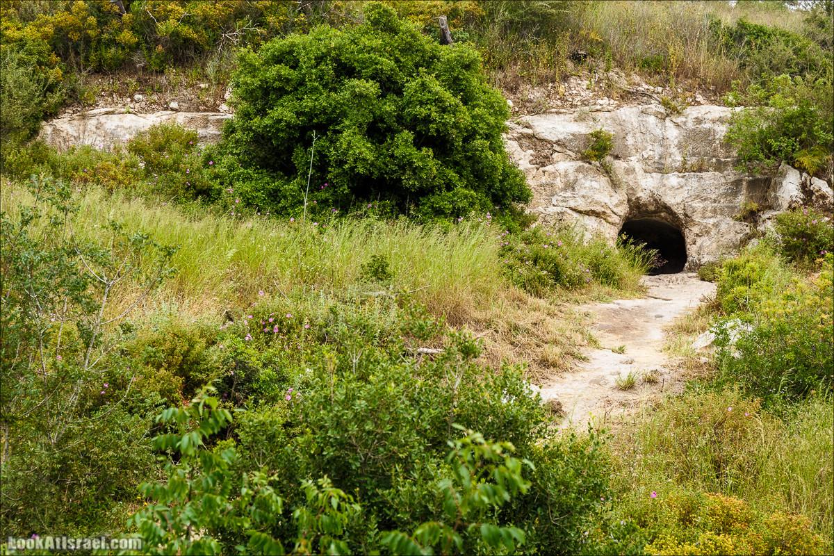 Ручей Орен и пещера Эцба | LookAtIsrael.com - Фото путешествия по Израилю