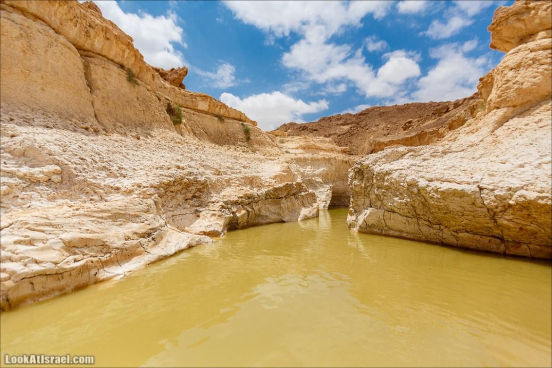 Гора Саароним, ручей Некарот и вода в ущелье Парсат Некарот   LookAtIsrael.com - Фото путешествия по Израилю