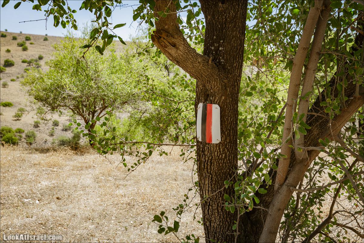 Пеший маршрут Горный Иордан | ירדן הררי | LookAtIsrael.com - Фото путешествия по Израилю