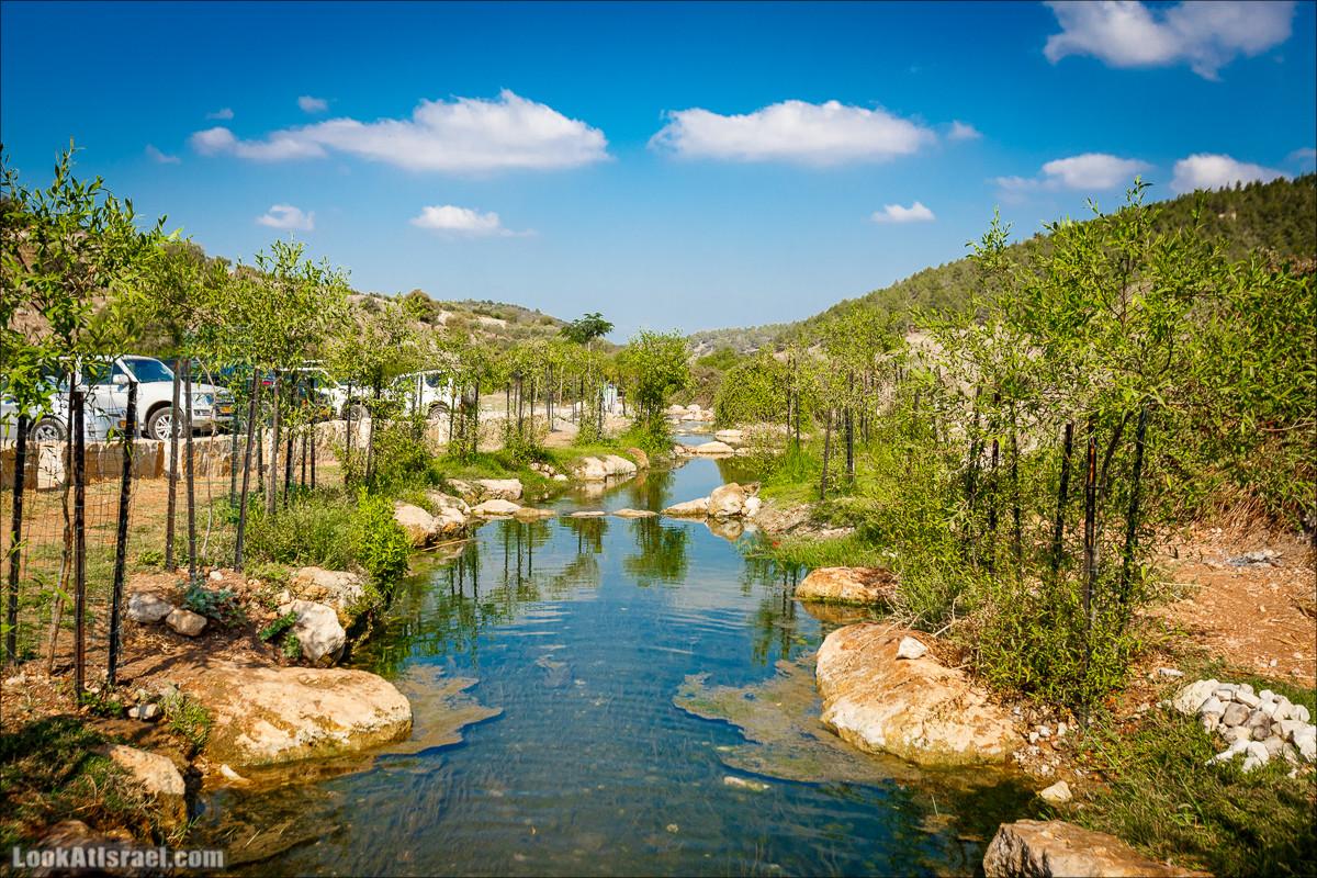 Ручей Циппори и долина Нетофа   נחל ציפורי ועמק נטופה   LookAtIsrael.com - Фото путешествия по Израилю