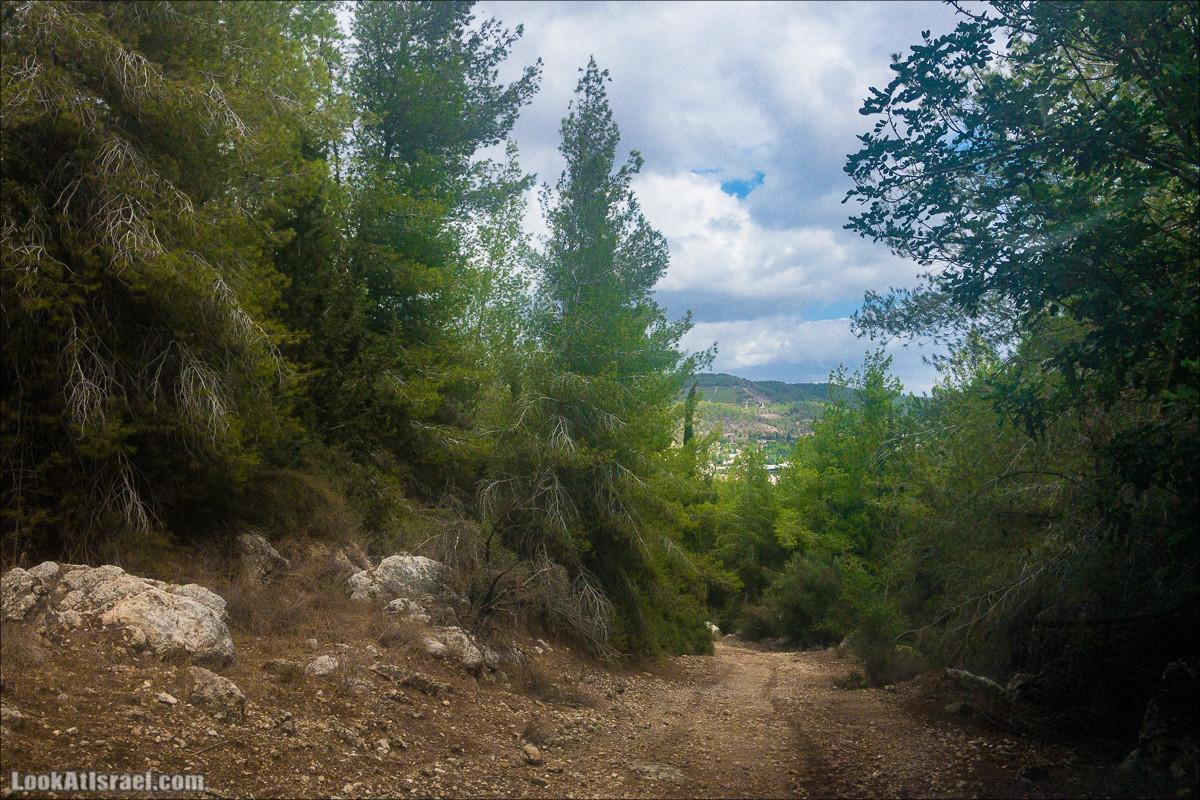 Внедорожная вылазка по округу Шфела | LookAtIsrael.com - Фото путешествия по Израилю