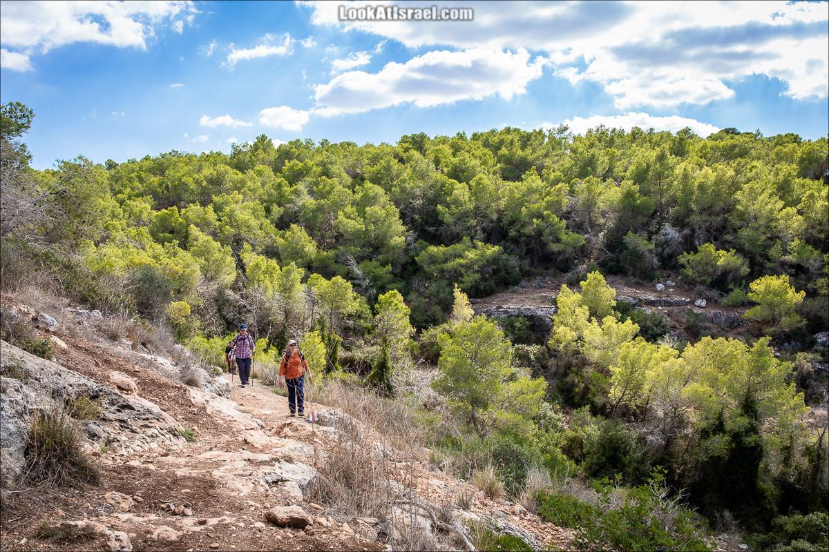 Неандертальцы ценили красоту горы Кармель