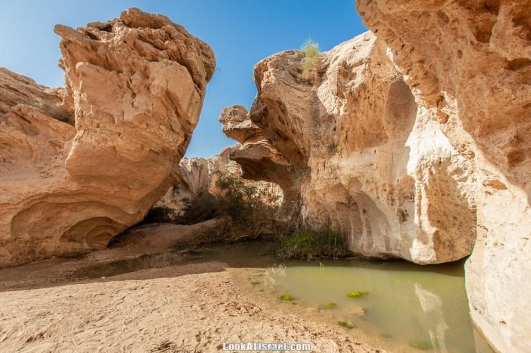 Источник Эйн Йоркам | Ein Yorqam | עין ירקעם | LookAtIsrael.com - Фото путешествия по Израилю