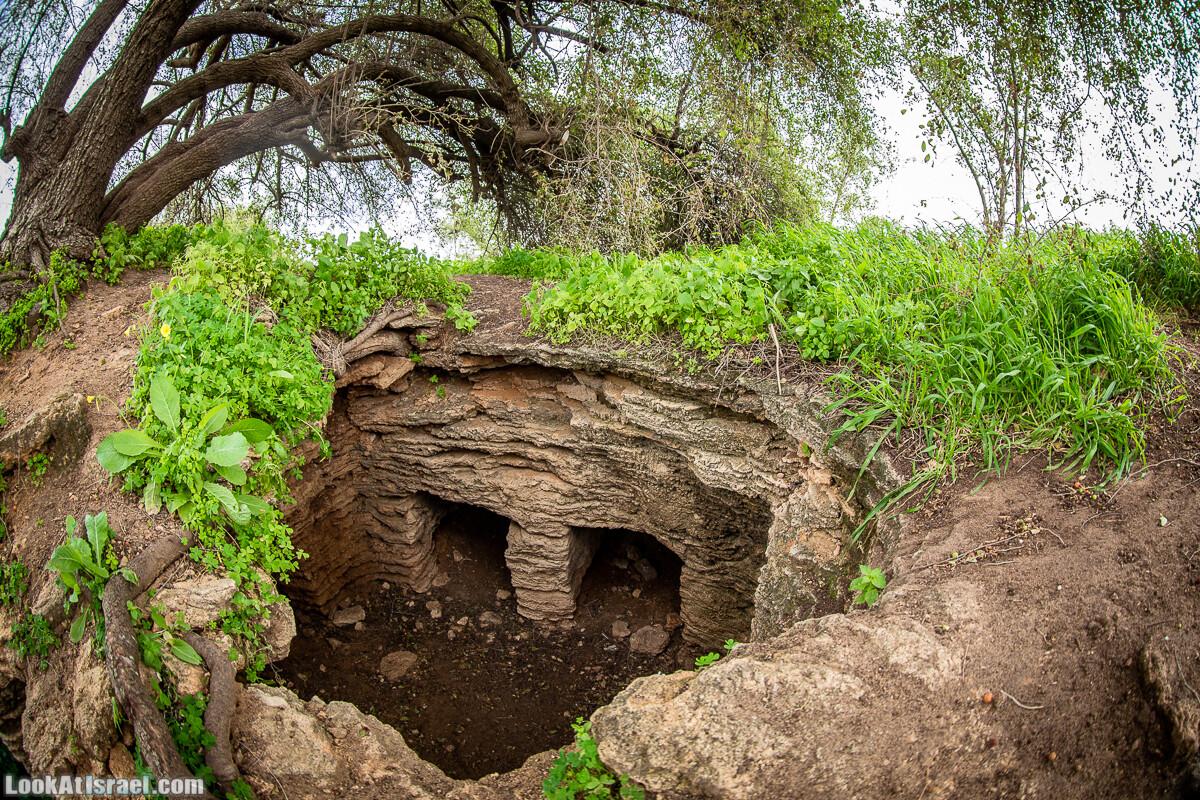 Пещеры Афека (меарот афека) Кладбище самаритян, поле нарциссов и парк восстанавливающихся деревьев | Afeka Caves | מערות אפקה | LookAtIsrael.com - Фото путешествия по Израилю