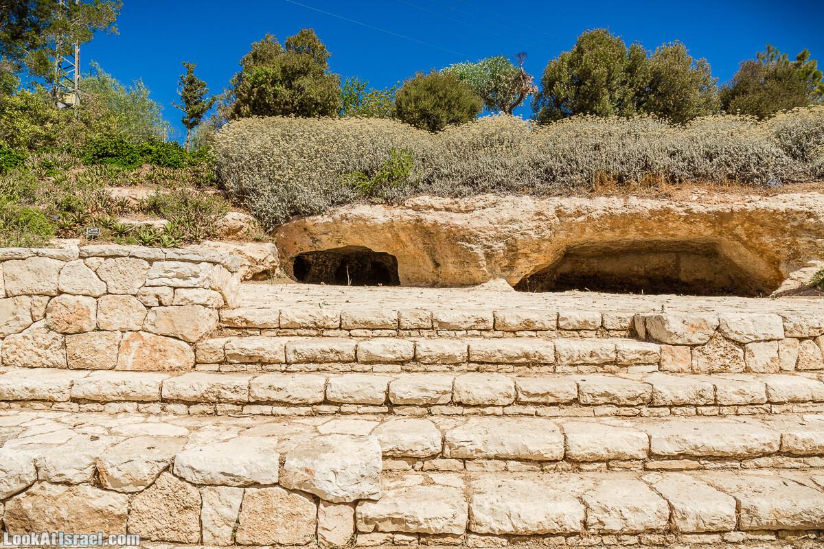 Ботанический сад Иерусалима, лето | קיץ בגן הבוטני ירושלים | LookAtIsrael.com - Фото путешествия по Израилю
