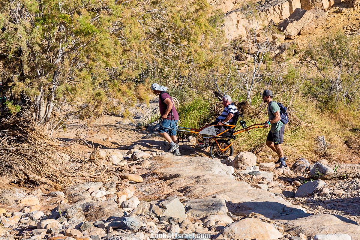 Приключения для всех - Амута Этгарим  עמותת אתגרים   ספורט אתגרי העצמה ושילוב חברתי של אנשים מיוחדים   LookAtIsrael.com - Фото путешествия по Израилю