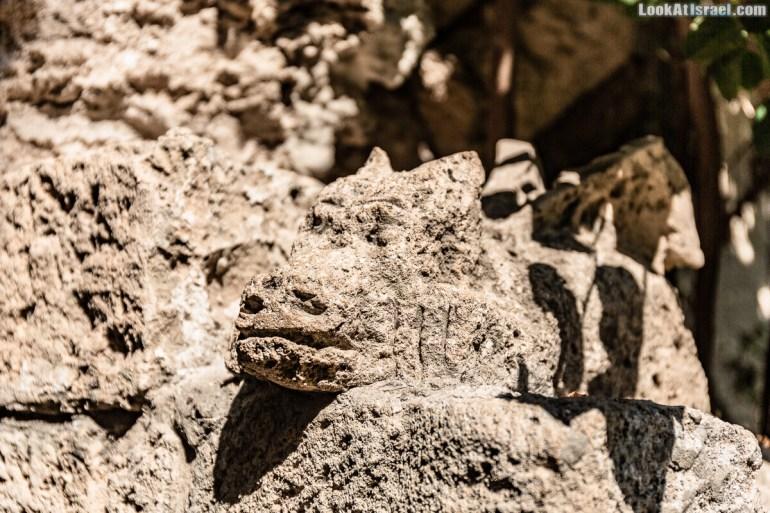 На улочках Яффо живёт дракон | LookAtIsrael.com - Фото путешествия по Израилю