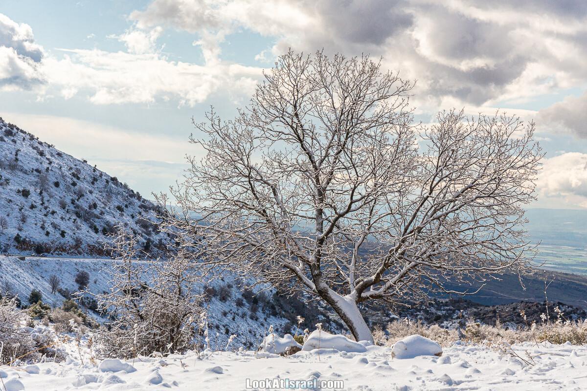 За снегом в горы