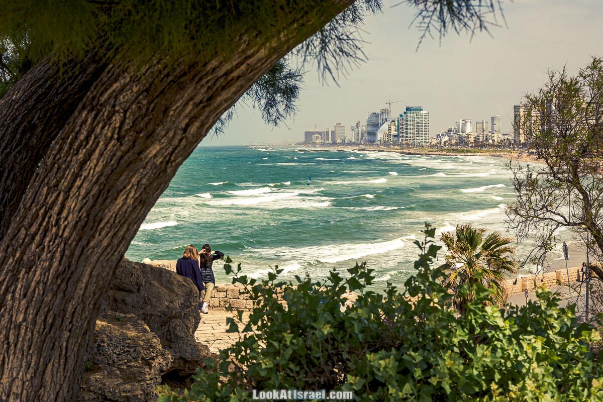 Случайные фотографии из жизни Тель-Авива   LookAtIsrael.com - Фото путешествия по Израилю