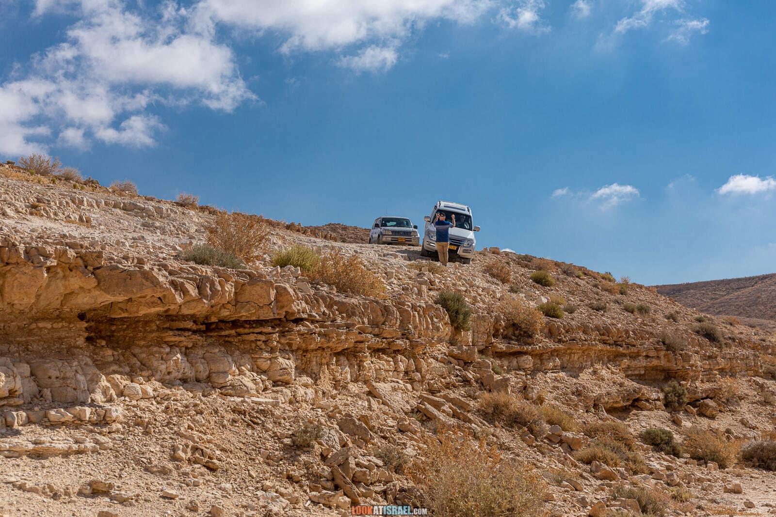 На внедорожнике вокруг махтеш Рамон, ручьи Арод и Одед
